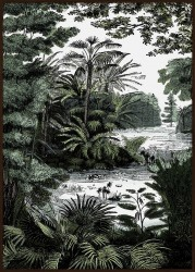 "Bild ""TROPICAL FOREST II"""